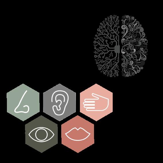 sensações e reações cerebrais